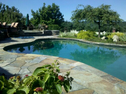 Stone masonry repair needed on this pool deck and patio. Masonry sealing and stone setting by Preferred Properties landscaping and masonry. (1/6)
