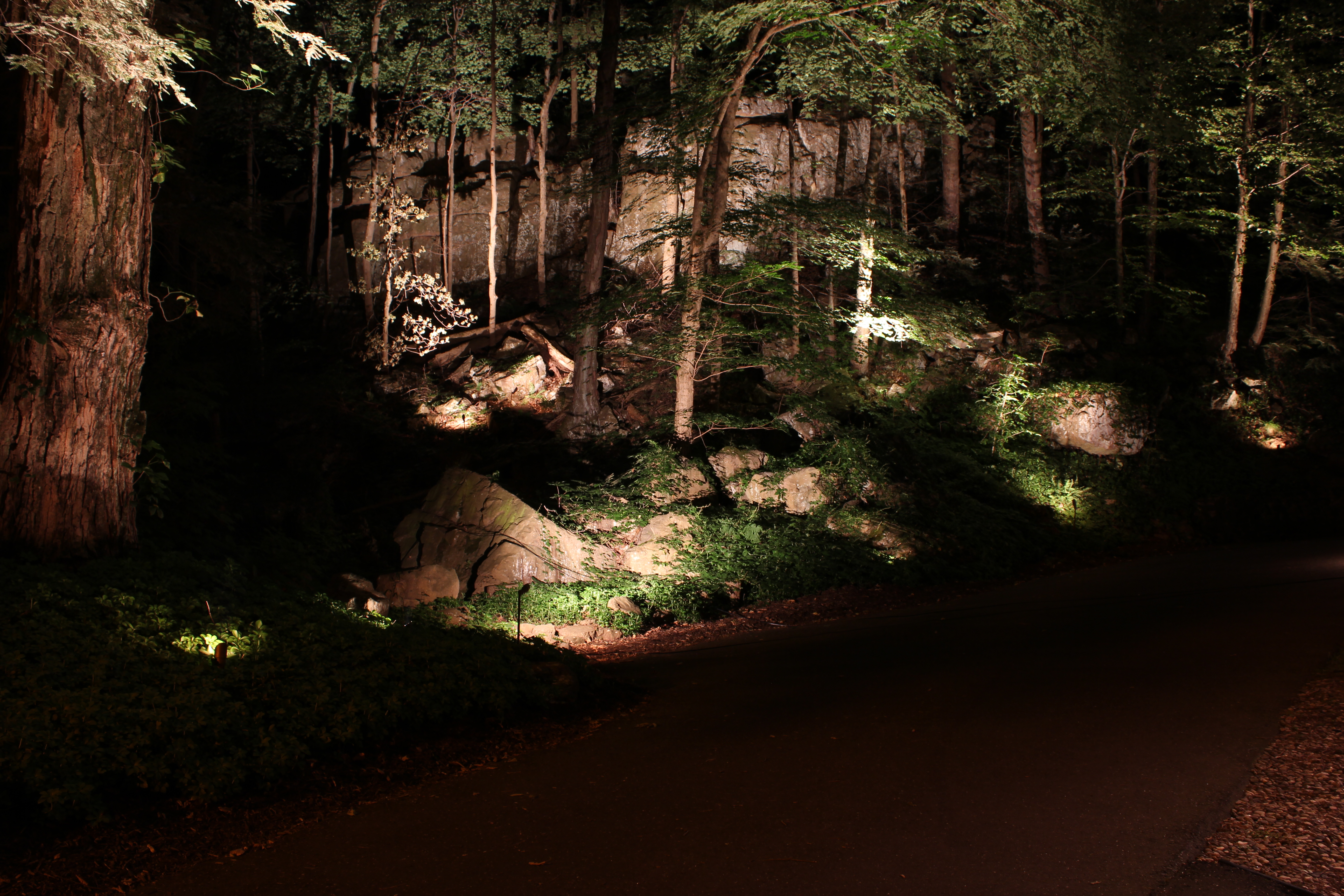 The art of landscape lighting brought to a higher level with finish of the lighting fixtures amongst the landscape you can come close during the day setting things up but finished locale of the outdoor fixtures is best mozeypictures Choice Image